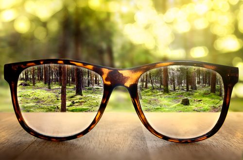 Fennel seeds helps improve eyesight